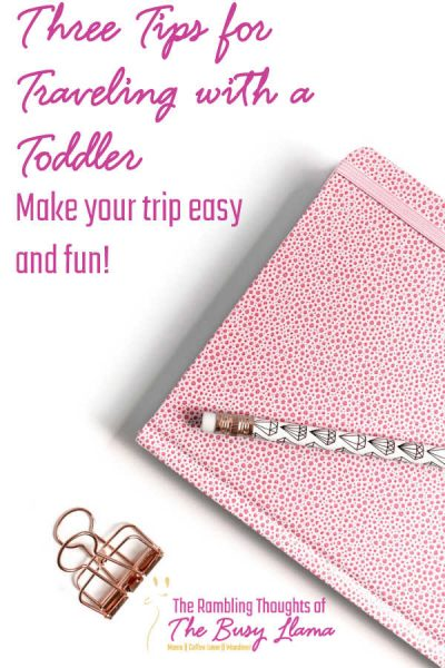 Traveling with a toddler and ready to hit the road or hop on the plane? Want to arrive with your sanity? I have got some tips for that!