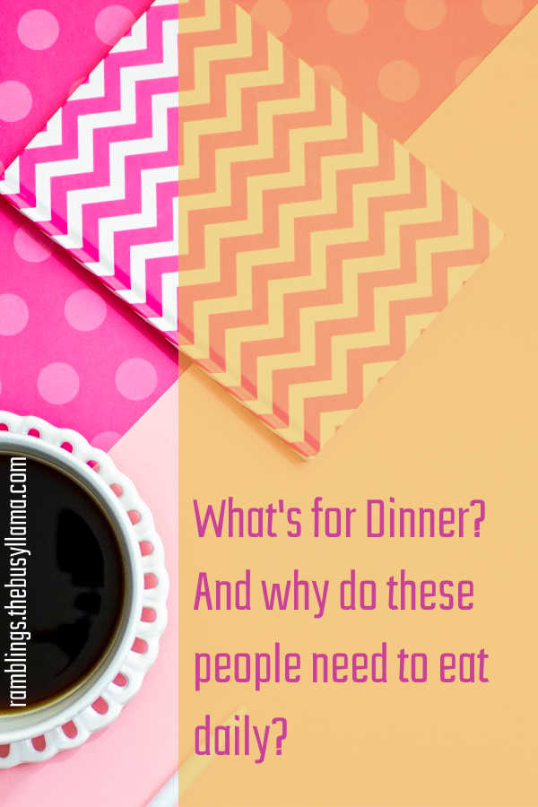 Those dreaded words that nobody likes to hear... what's for dinner? Burnt out from all the regular rotation and constant meal planning try a meal kit!