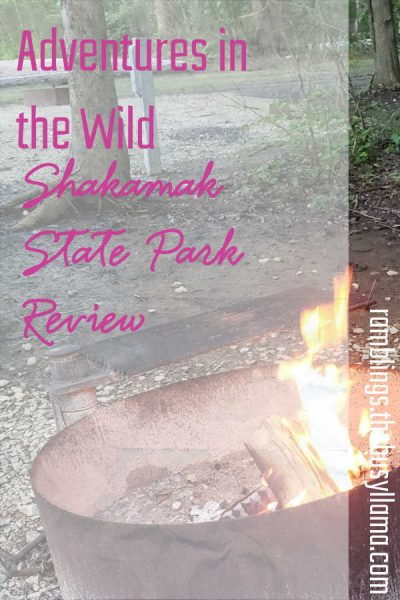 We wrapped up our summer camping blitz with a trip to row a boat and so much more! Check out the Shakamak State Park Review to learn what I will NOT do again.