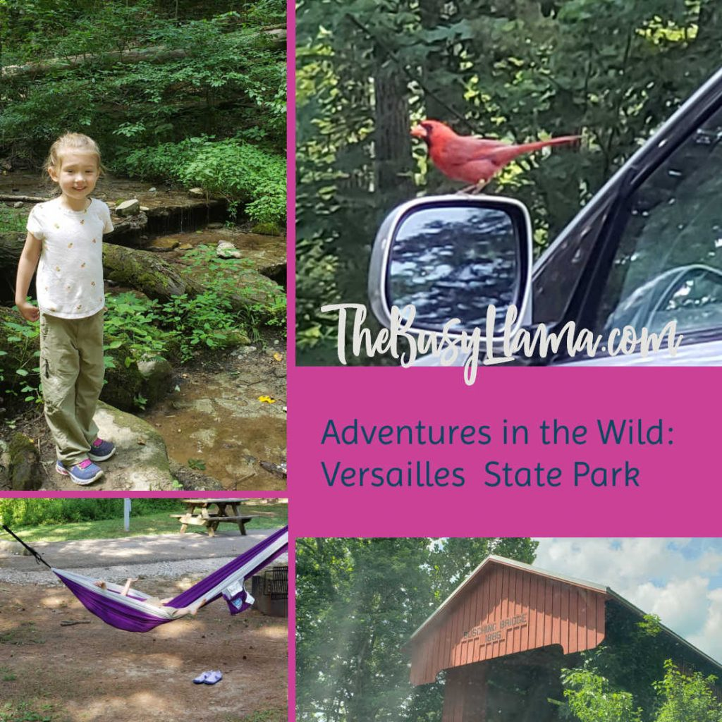 Camping has certainly been all the rage this summer for a lot of people, this mama included. Here is our latest adventure, a Versailles State Park Review!